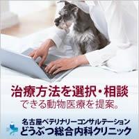 治療方法を選択・相談 できる動物医療を提案。 名古屋ベテリナリーコンサルテーション動物総合内科クリニック