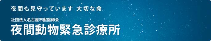 夜間も見守っています  大切な命 社団法人 名古屋市獣医師会 夜間動物緊急診療所