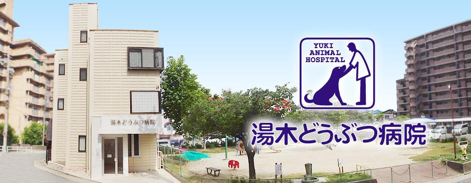 湯木どうぶつ病院 – 名古屋市港区の動物病院[完全担当医制]